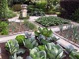 vegetable garden path ideas vegetable garden designs