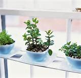 25 Cool DIY Indoor Herb Garden Ideas - Hative