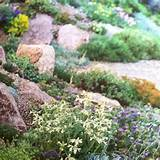 More rock garden ideas | Home is Where My Heart is | Pinterest