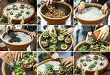 diy home garden ideas 3