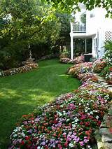 Flowers | Garden ideas | Pinterest