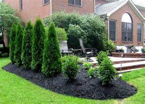 Privacy landscaping plants ideas for outdoor yard garden decoration ...