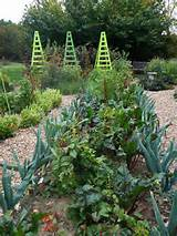 Tower Hill Vegetable Garden | Gardening Ideas | Pinterest