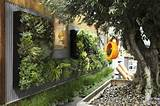Casa & Flores: Jardim Vertical
