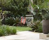 metro modern landscape decorating ideas with container plants garden