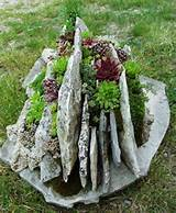 Planters | Succulent South
