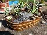 Miniature garden. | Miniature Fairy, Gnome, etc. Garden ideas | Pinte ...