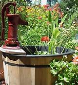 inspirations container gardening container water garden kit ideas