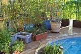 home inspirations container gardening patio container garden ideas