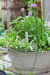 Herb garden/container garden | For the garden/ potting shed | Pintere ...
