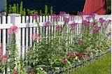 fence border | Borders for flowerbeds ☼ | Pinterest