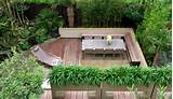 small jungle garden mylandscapes ltd london uk garden ideas garden