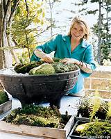 ... decoration ideas from Martha Stewart for terrace, balcony, backyard