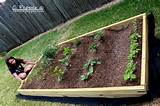 raised box gardening crafty ideas pinterest