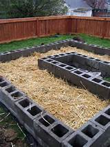 raised beds5