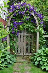 ... arbor with flowering vines adds a welcome country touch to the garden
