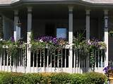 window boxes | gardening ideas | Pinterest