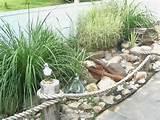Garden Types | HGTV