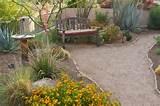 Southwest Style - Southwestern - Landscape - phoenix - by Boxhill ...