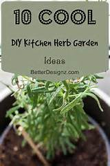 10 Cool DIY Kitchen Herb Garden Ideas