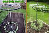 what a great idea for a garden trellis