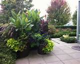Tropical Landscape Design, Pictures, Remodel, Decor and Ideas - page 4 ...