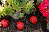 Garden Craft Ideas Craft Ideas For The Kids