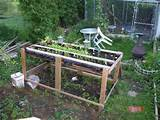 ideas pallets raised garden beds (20) - Snappy Pixels