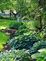 and shade backyard ideas how to spruce up the sewer mound gardening