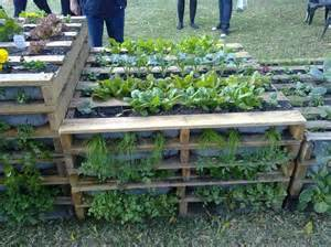 Using Pallets for Raised Garden Beds :: Home design ideas,DIY Creative ...