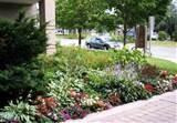small front garden futuristic