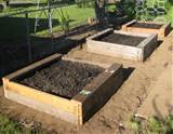 "... boxes. Here's my simple ""how to"" for building raised garden beds"