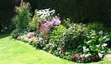 perennial garden design sickles market
