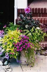summer container garden | Gardening - Containers | Pinterest