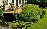 beautiful japanese garden design landscaping ideas for small spaces