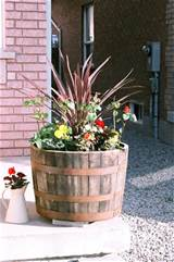 ideas for barrel planter outdoor space pinterest