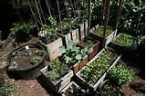 new garden ideas pictures urban garden design urban gardens unlimited