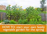 easy garden ideas vegetables native garden design
