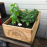 herb garden box design is a part of a simple herb garden design for ...