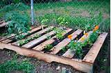 25 inspiring pallet garden and furniture ideas the self sufficient