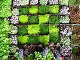 ... Garden With DIY Gardening: How To Create A Vertical Wall Garden Ideas