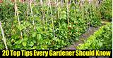 20 Top Tips Every Gardener Should Know -