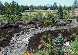 stunning high desert landscaping designs for home yard high desert