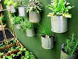 Insanely Creative Vertical Garden Ideas (16)