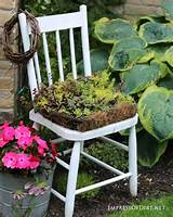 plant a succulent chair 9 diy succulent garden ideas at