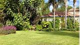 southern california gardening lawn care for fall
