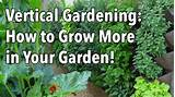 ... Gardening - Simple Ideas for a Vertical Vegetable Garden - YouTube
