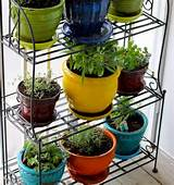 ... Inspirations > Container Gardening > Container Herb Garden Plans Ideas