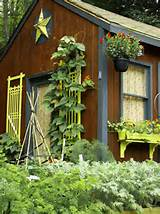 and shed rustic design ideas with terrific container garden cottage