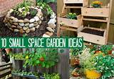 1o small space garden ideas small space gardening grow cucumbers on a